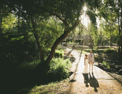 Cedar Creek Garden Wedding | Gold Coast Wedding Photography | Winnie and Adam