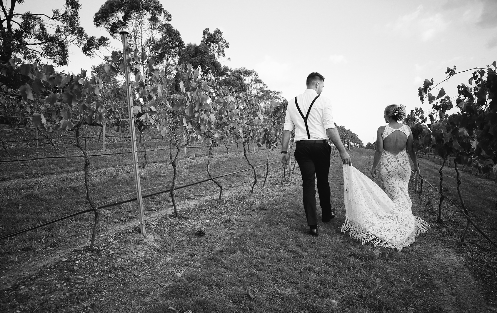 Sirromet Winery Wedding